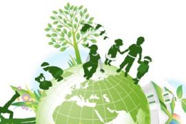 Protecting the environment: whose should it be?